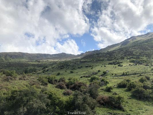 Natuurgebied Roys Peak