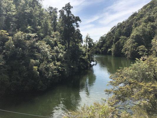 Rivier door Abel Tasman Park