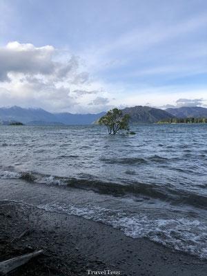 Lake Wanaka boom