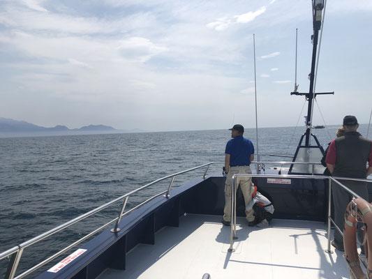 Kaikoura zee