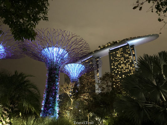 Gardens by the Bay en Marina Bay Sands Hotel