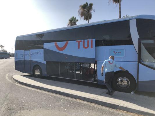 TUI bus
