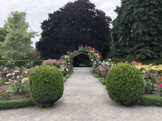 Botanische Tuin van Christchurch