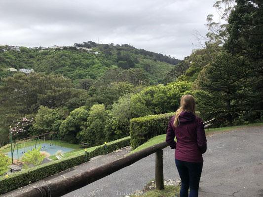 Botanische tuin van Wellington bezoeken
