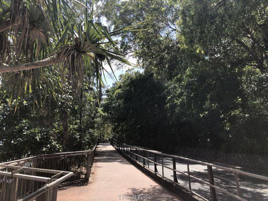 Start Coastal Walk Noosa