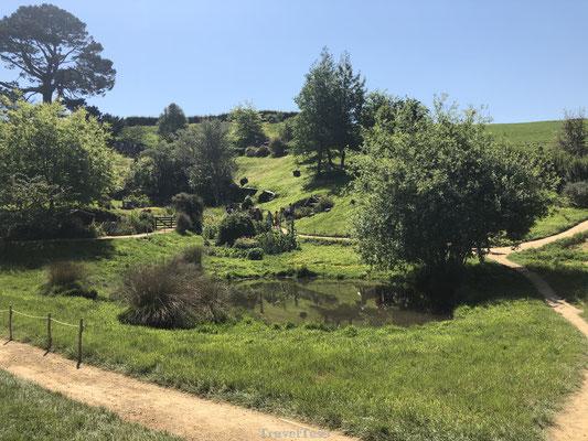 De Gouw is een onvoorstelbaar groen dorp