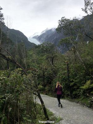 Franz Josef hike