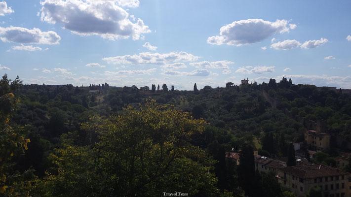 Groene heuvels in Florence