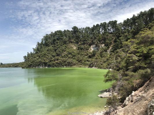 Wai-O-Tapu meer