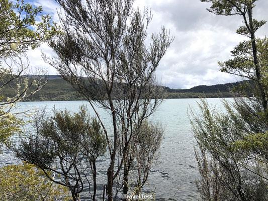 Brunner Peninsula Walk Nelson Lakes