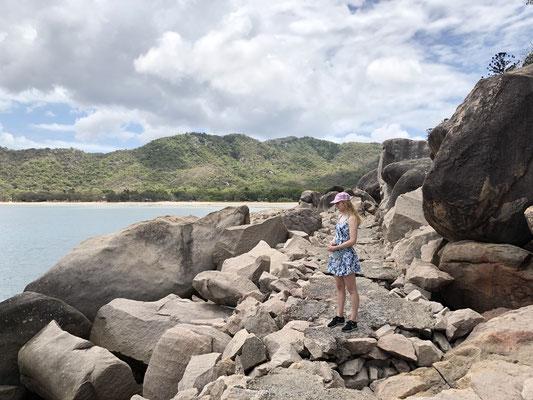 Rock Wallabies Magnetic Island