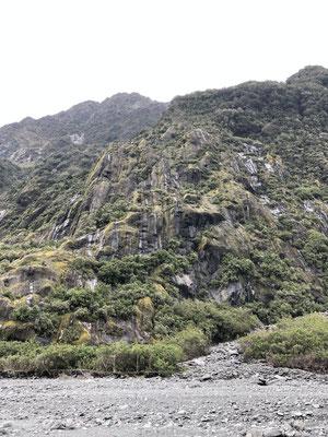 Franz Josef Glacier rotsen