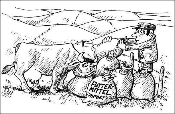 Futtermittelimport