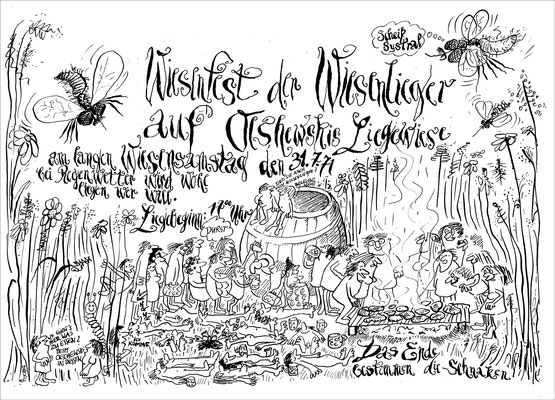 Fest der Wiesenlieger, 1971