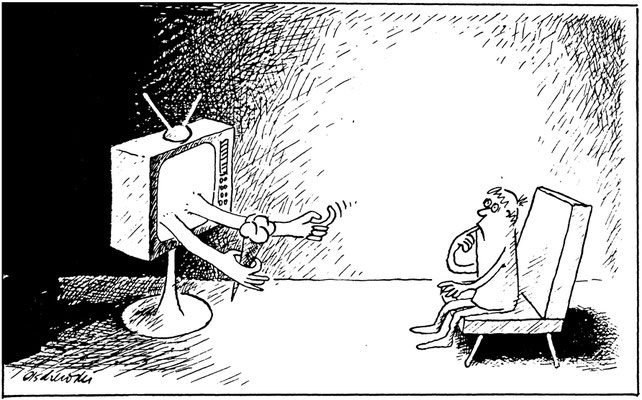 Fernsehwerbung als geheime Verführer
