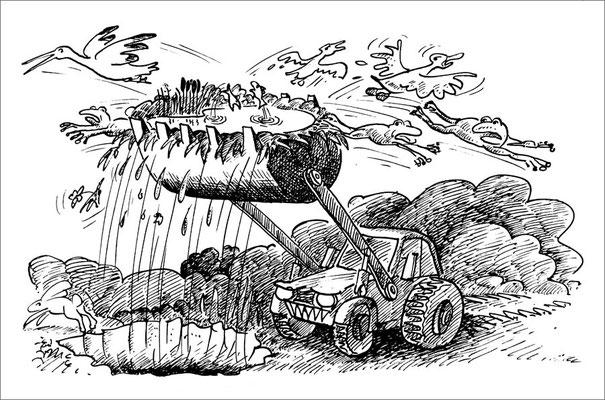 Zerstörung der letzten Biotope