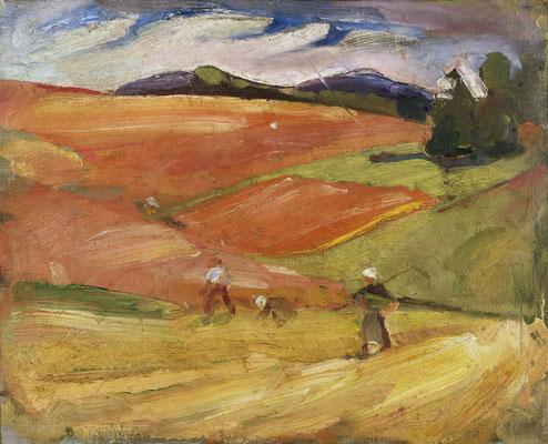 Bauern auf der Alb bei der Ernte (1919-1921)