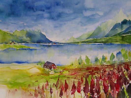 Lofoten og Vesteralen - Norwegen