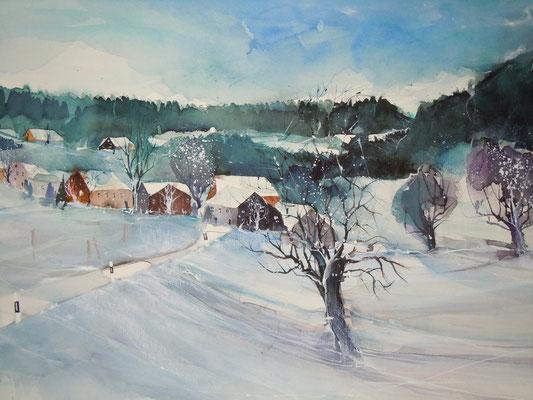 Winterzeit im Toggenburg
