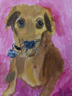 Dachshund, by Adilee, age 9