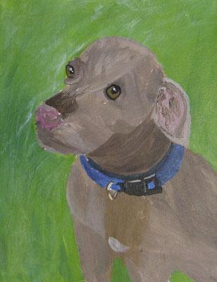 Winston, by Gracie