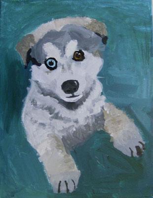Husky Puppy, by Hanna
