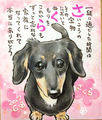 愛犬の遺影似顔絵、名前ポエム入り