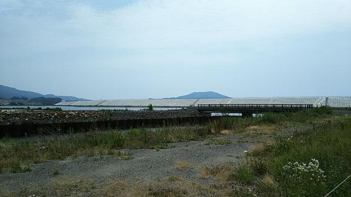 陸前高田市内から見た防潮堤。手前は古川沼。