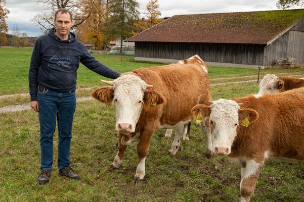 Mastbetrieb Josef und Ingrid Weingand mit Biokalbochsen