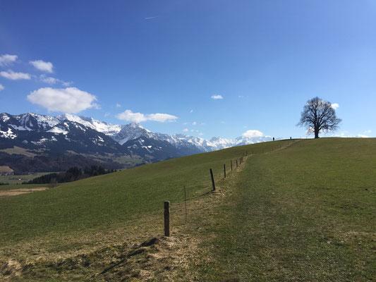 Wittelsbacherhöhe