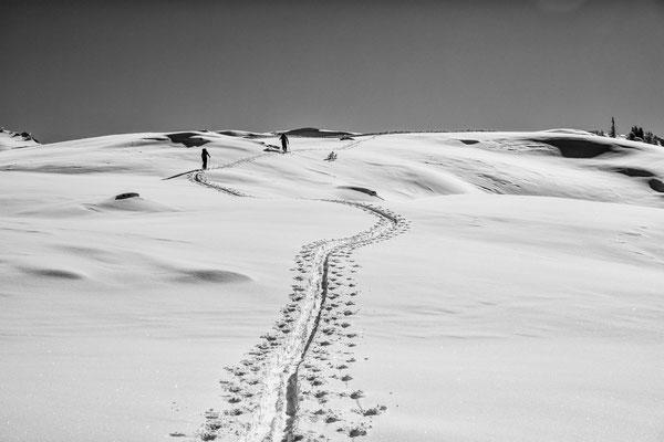 Die letzten Meter zum Gipfel des Muttjöchle
