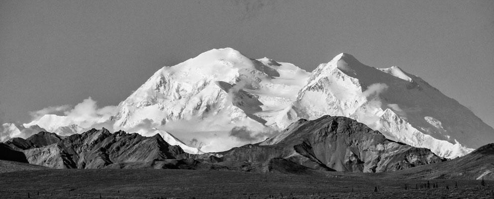 Denali Nationalpark Alaska - 31