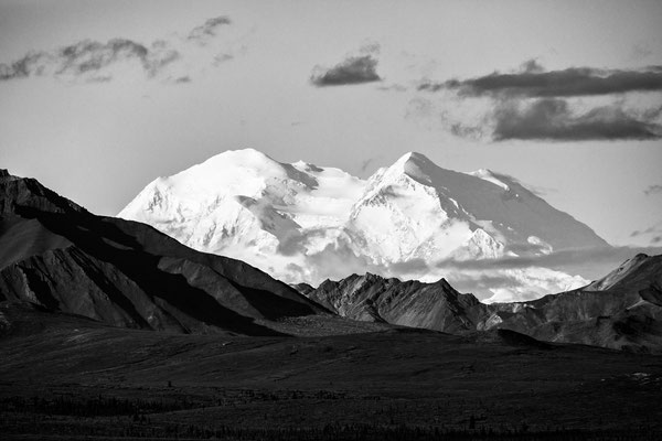 Denali Nationalpark Alaska - 30