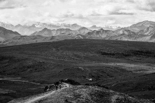 Denali Nationalpark Alaska - 20