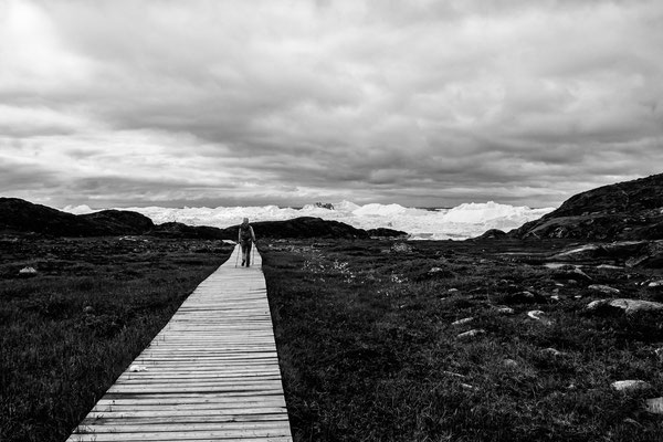 Disko Bay Ilullisat Grönland 18