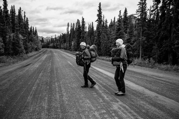 Denali Nationalpark Alaska - 36