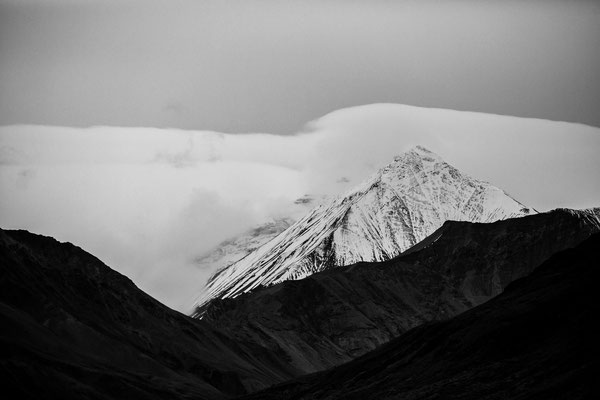Denali Nationalpark Alaska - 44