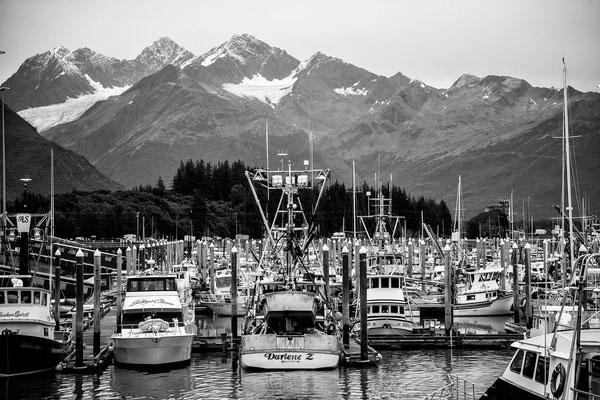 Der Hafen von Valdez 2