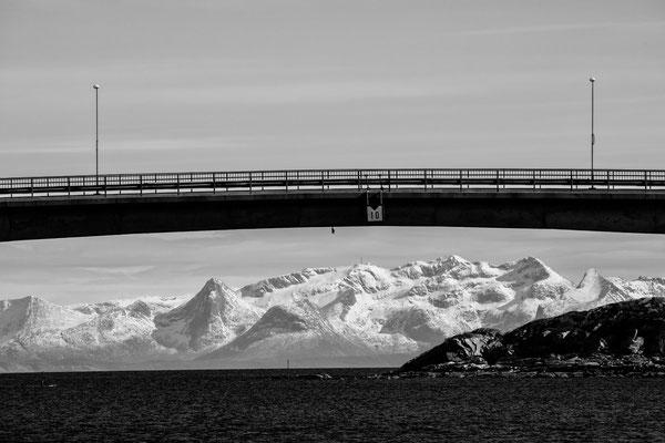 Lofoten Landscape 46