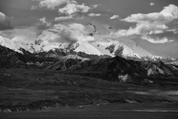Denali Nationalpark Alaska - 54
