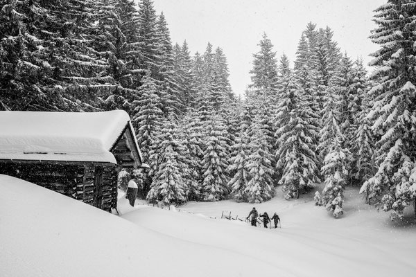 Auf Schneeschuhen am Kristberg 5