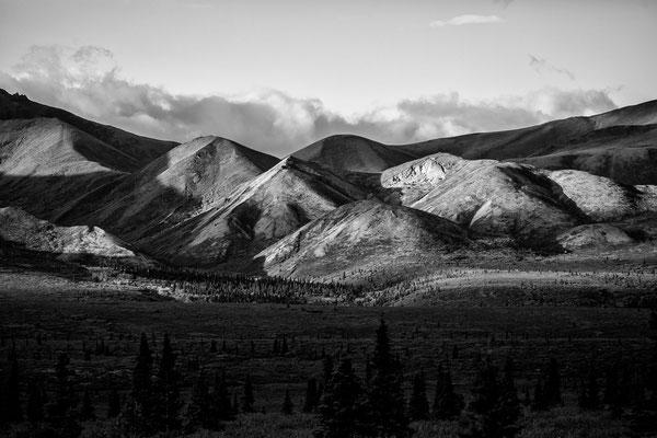 Denali Nationalpark Alaska - 28