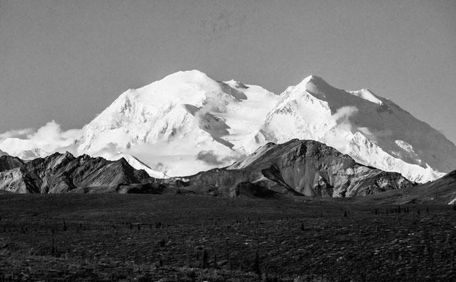 Denalo - Alaska