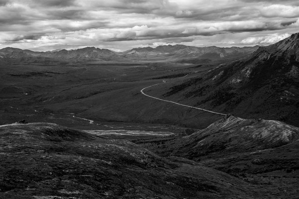 Denali Nationalpark Alaska - 16