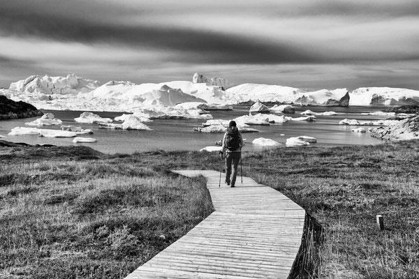 Diskobay Ilulissat Grönland - 2