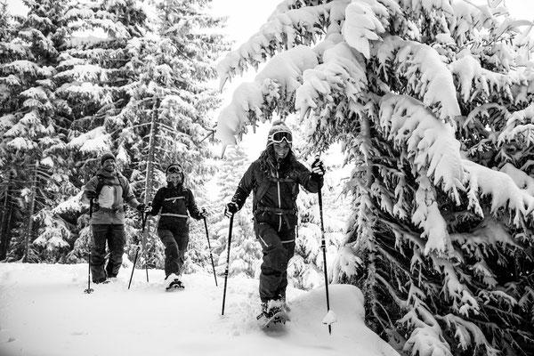 Auf Schneeschuhen am Kristberg 2