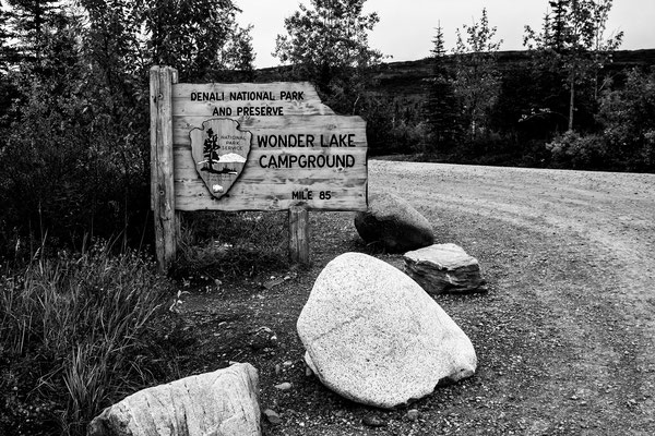 Denali Nationalpark Alaska - 49