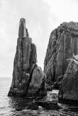 Steil auragende Klippen und Felsen - wie Pfeile aus dem Mer