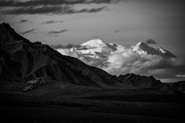 Denali Nationalpark Alaska - 1