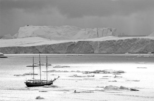 Disko Bay Ilullisat Greenland 3